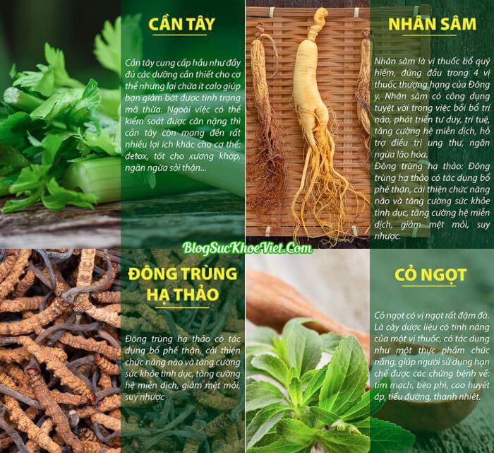 Khám phá thành phần của bột cần tây Sitokata For Men